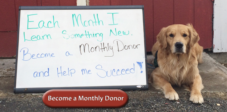 Monthly Donor
