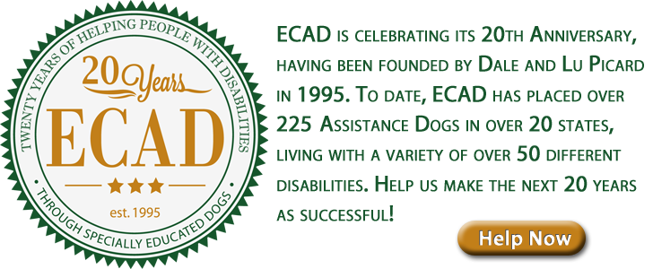 20 Years of ECAD