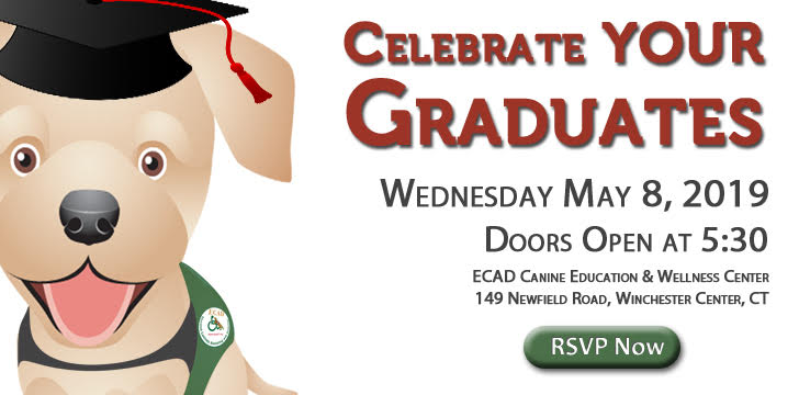 May Graduation Invitation