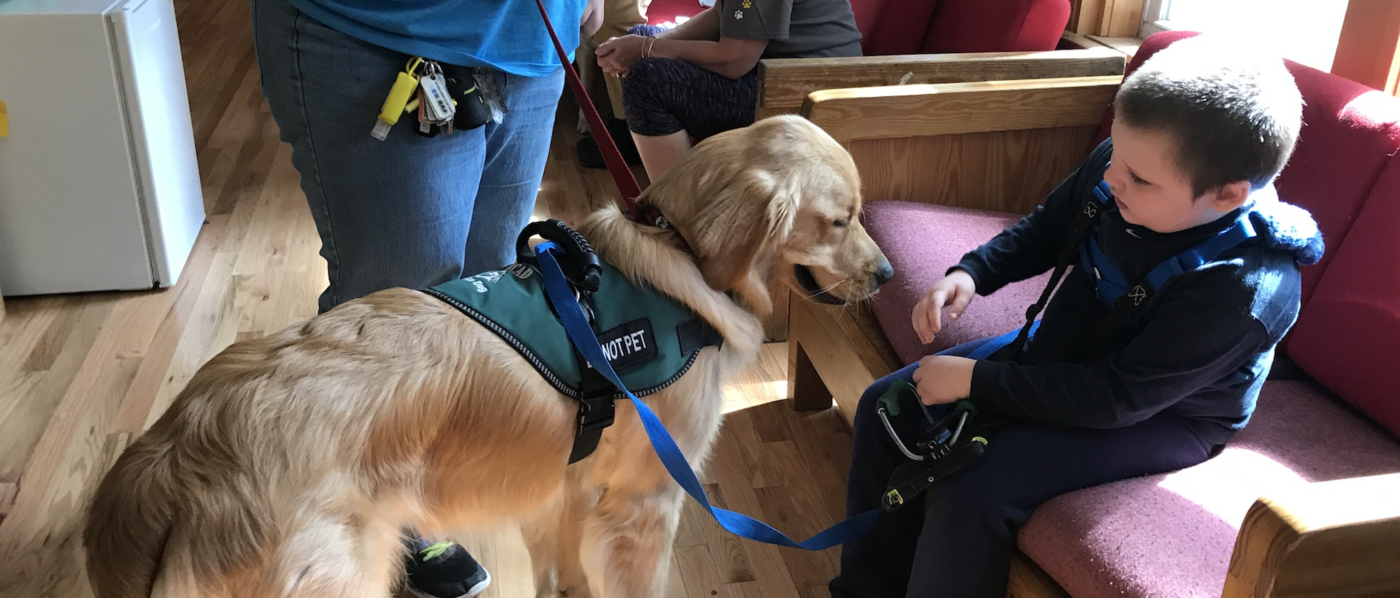 service dog child autism