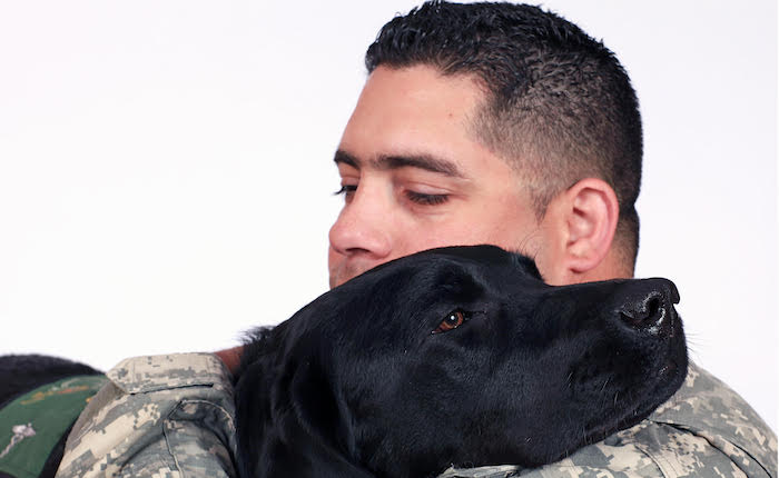 service dogs for ptsd